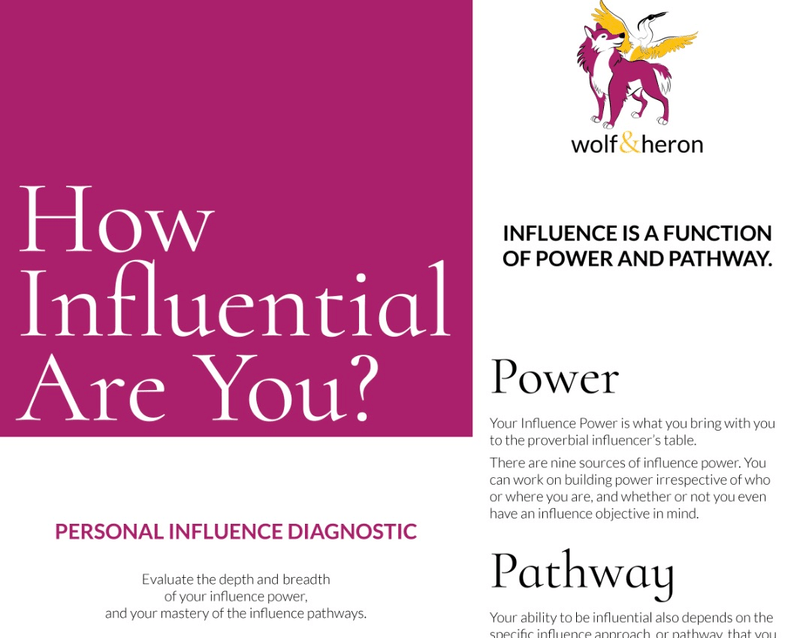 Wolf and Heron's Personal Influence Diagnostic