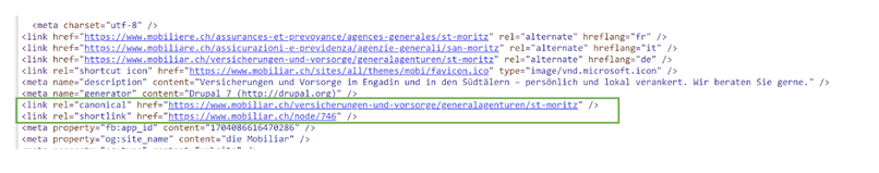 example of correct use of canonical in a website