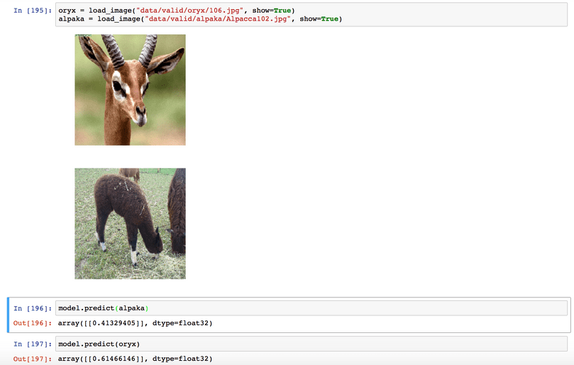 Zoo Pokedex Part 2: Hands on with Keras and Resnet50 · Blog